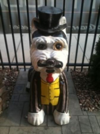Lattitude : New outdoor patio (and mascot)