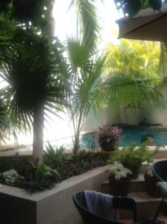Casa Sirena Hotel: Casa Sirena Courtyard 