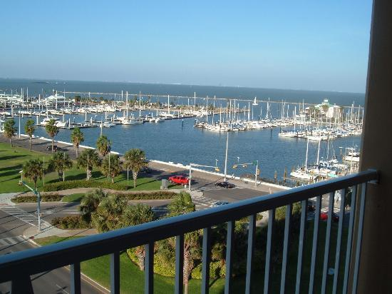 Best Western Corpus Christi: From our room 820