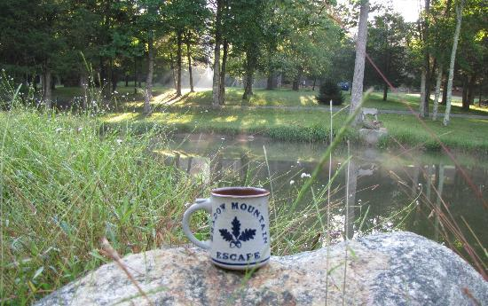 Shadow Mountain Escape: Peaceful morning by the pond