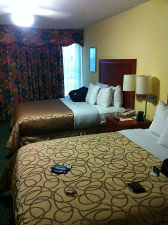 Homewood Suites by Hilton Lake Buena Vista-Orlando: our room