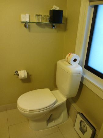 Hotel Abri: Toilet with toiletries shelf above