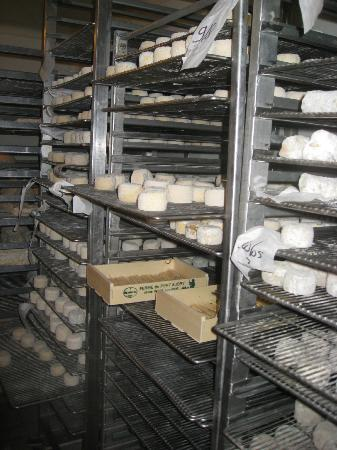 Paris Wine Day Tours: Goat cheese farm - refrigerated room