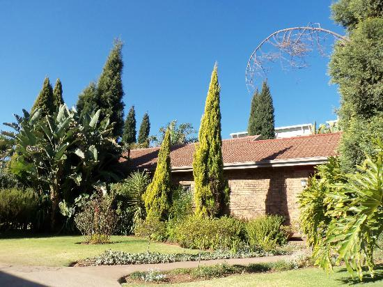 Aero Guest Lodge: Beautiful trees