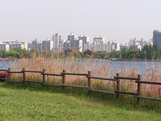 Goyang, Corea del Sur: 경기도 고양시 일산호수공원! 아파트와 잘 어우러져있다.