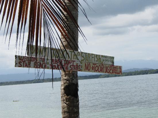 Panama's Paradise Saigoncito: Starfish Beach