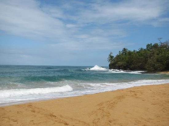 Panama's Paradise Saigoncito : Playa Bluff