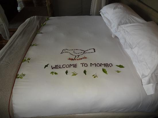 Wilderness Safaris Mombo Camp: we also had an anniversary greeting ;)
