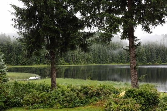 Auke Lake Bed & Breakfast: View from back deck