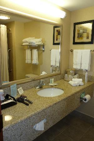 Comfort Suites Gettysburg: Bathroom