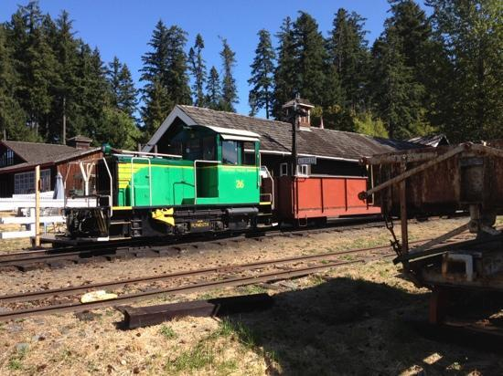 B.C. Forest Discovery Centre: Diesel-powered train running the grounds.