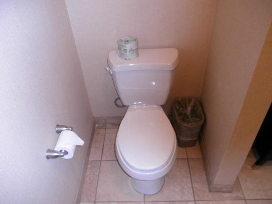 Hampton Inn & Suites Fredericksburg: Toilet
