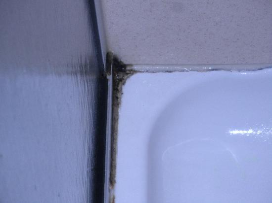 Hampton Inn & Suites Fredericksburg: Mold