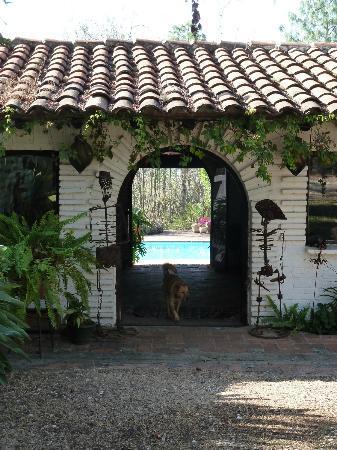 One entry to Casa Raab