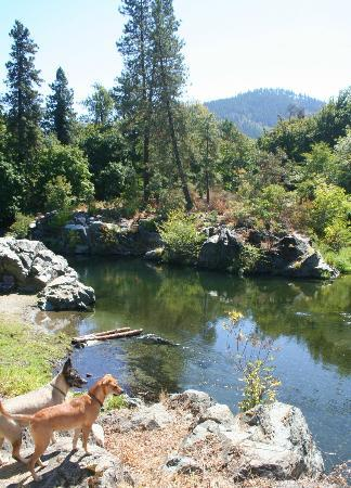 Applegate River Lodge : just up river