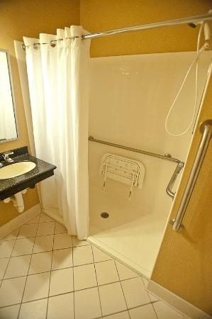 Holiday Inn Express Kent Island: step in shower, low entry and seat for handicap access.