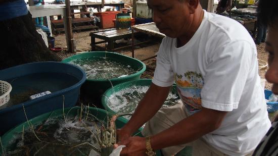โรงแรมไรซิ่งซัน เรสซิเดนซ์: Fresh seafood market