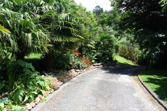 Tairua Coastal Lodge: Drive In