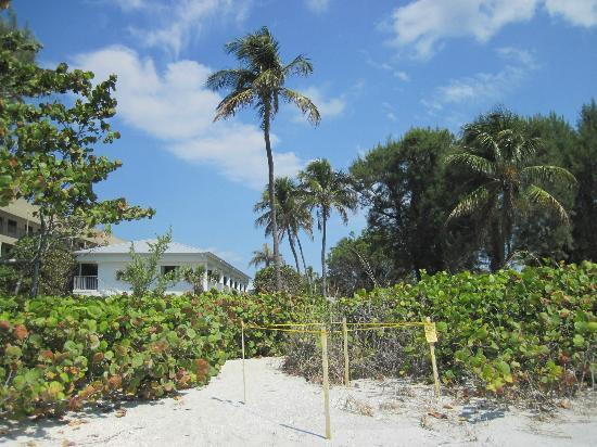 Caribe Beach Resort: Great paths to the gulf!