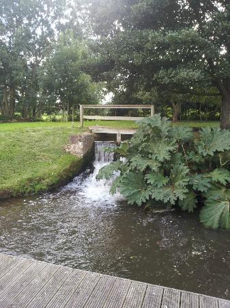 Gurney Manor Mill: Garden