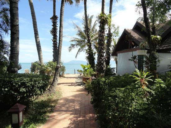 Paradise Beach Resort: Way to the beach and restaurant