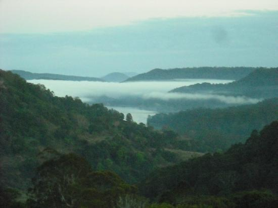 Maleny Tropical Retreat: mist in the valley
