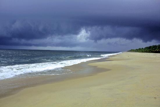 Mararikulam, India: The Beach