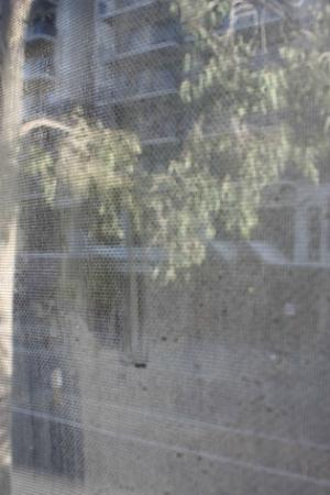 Mont Clare Boutique Apartments: Dirty bedroom window (contrast showing area I wiped with damp cloth)