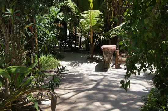 Casa Umoja: der Garten