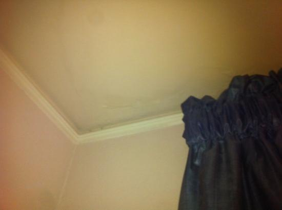 maintenance should have addressed the rotten looking ceiling in room 4088 at The Menger Hotel