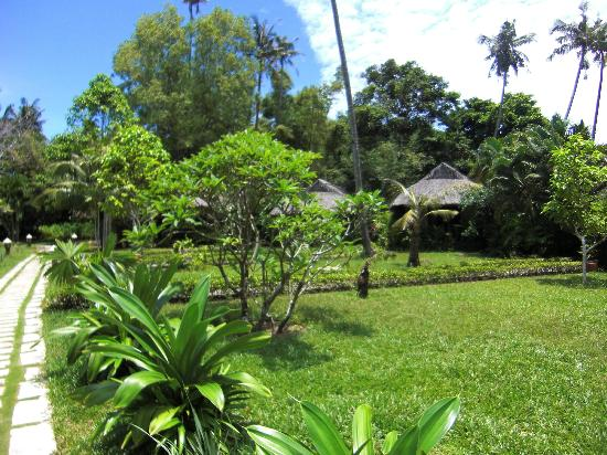 Mai House Resort : Jardins