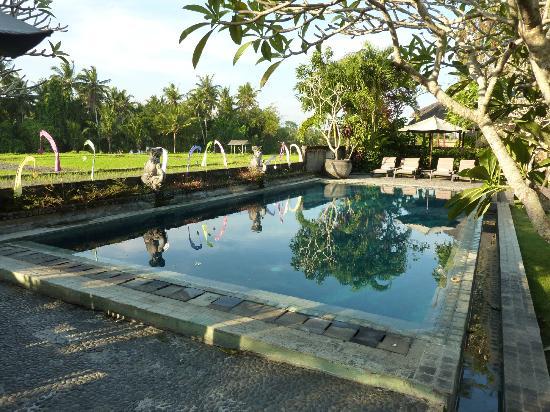 Mandala Desa: Pool