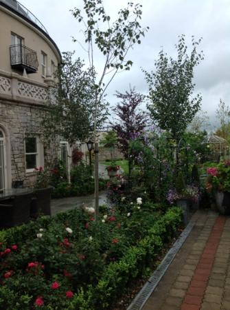 Step House Hotel: the garden