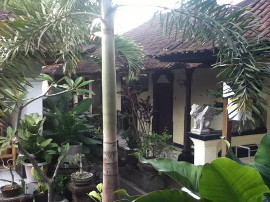 Dewi Antara Homestay: garden and rooms
