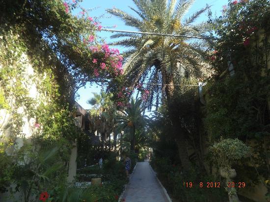 Hotel Paradis Palace: garden