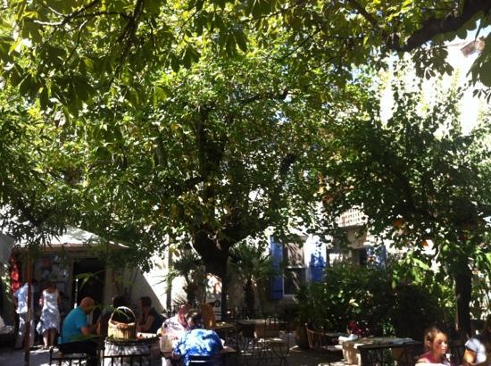 La Table du Meunier: sous les arbres