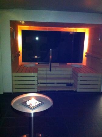 Hotel Arc-en-ciel: sauna