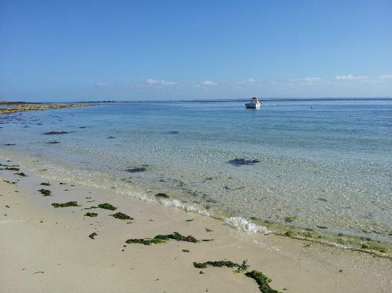 Ile Molene, France: préservé et apprécié