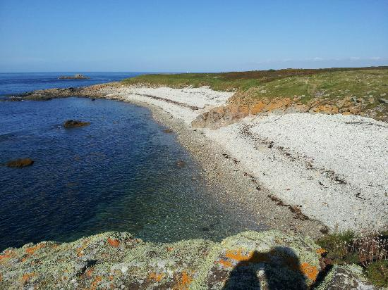 Ile Molene, France: cote sauvage et préservé