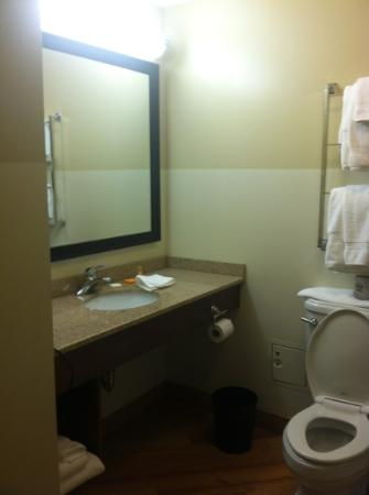 La Quinta Inn & Suites Chicago Downtown: bathroom in king room