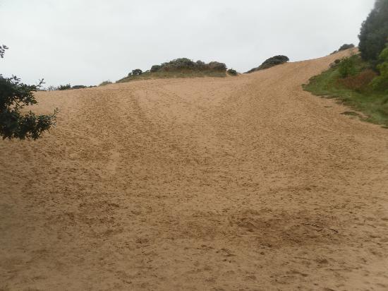 Merthyr Mawr Sand Dunes : The Big Dipper