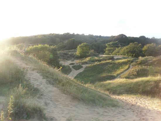 Merthyr Mawr Sand Dunes : sand dunes path