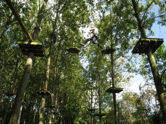 Beauregard aventure : Tarzan...