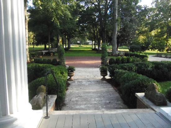 Madison Oaks Inn & Gardens: The view from the front veranda