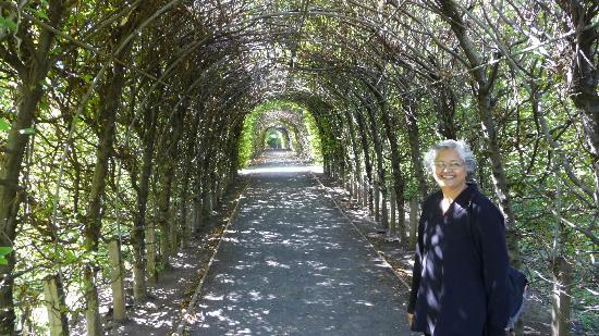 Snug Harbor Cultural Center: The Gardens