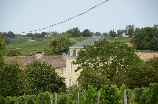 Chateau Richelieu: The Château from the vineyards