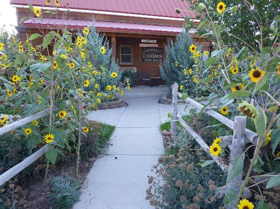 Canyons Bed and Breakfast : Front of Canyons Escalante