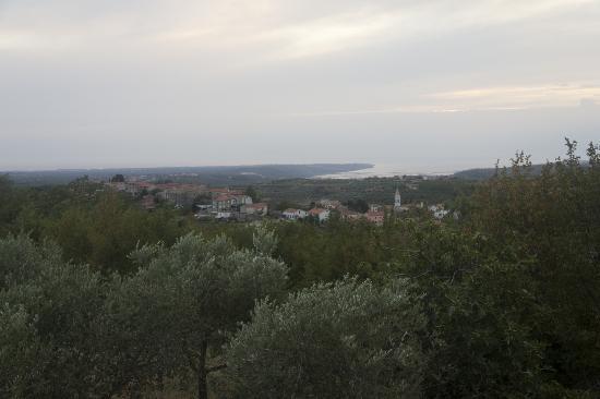 Agroturizam San Mauro: La vista dalla nostra camera con il mare sullo sfondo