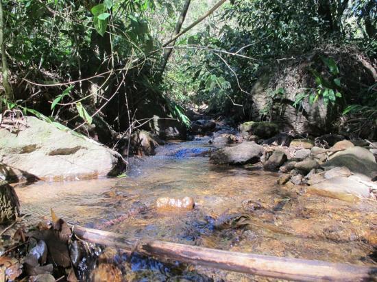 Villa Vittoria: Córrego que passa pela propriedade