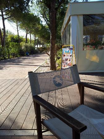 Camping Village Garden Paradiso : Drink bar